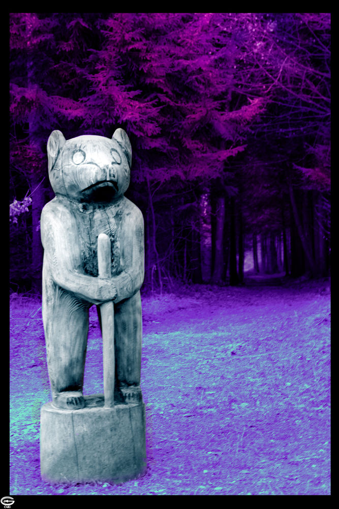 Photo in Landscape #nature #forest #bear #way #road #tree #purple #blue #wood