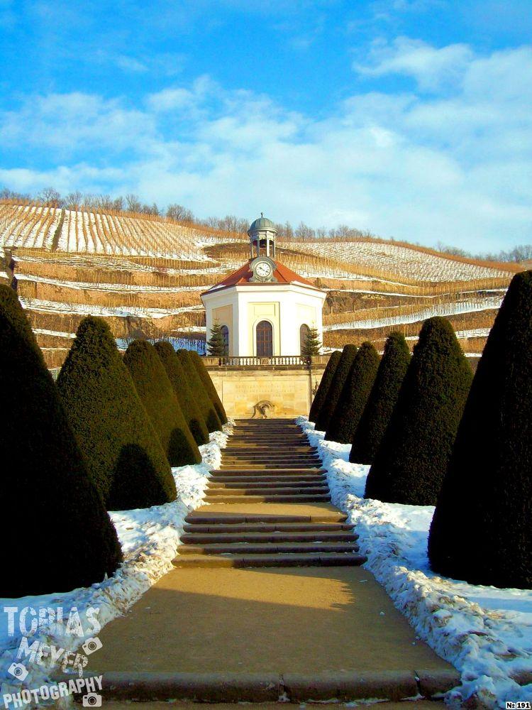 Winter Dreams at Castle Wackerbarth by TobiasMeyerPhotography