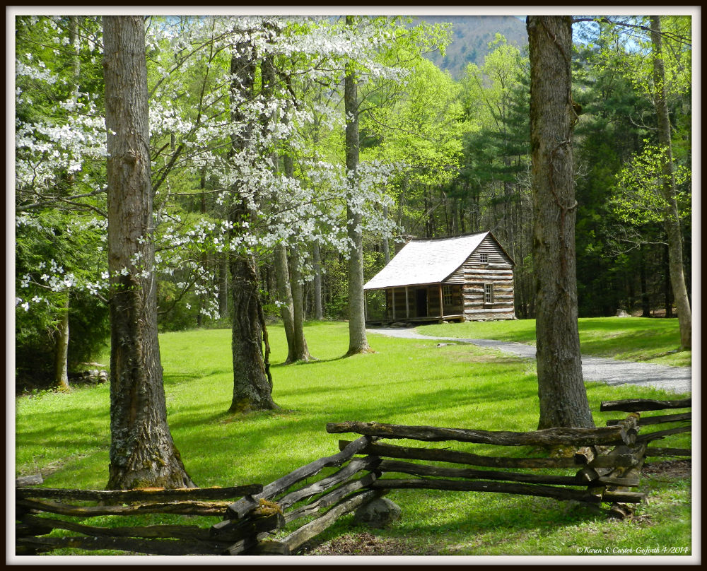 Cabin in the Mountains  by Karen Carter-Goforth
