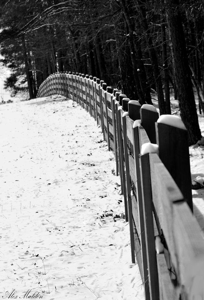 fences by amaldon