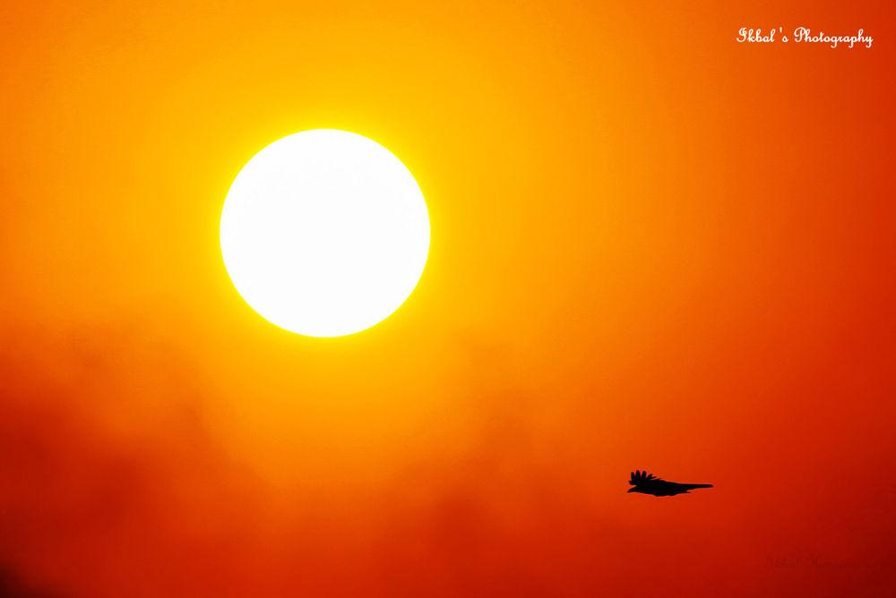 The Sun by ikbal121