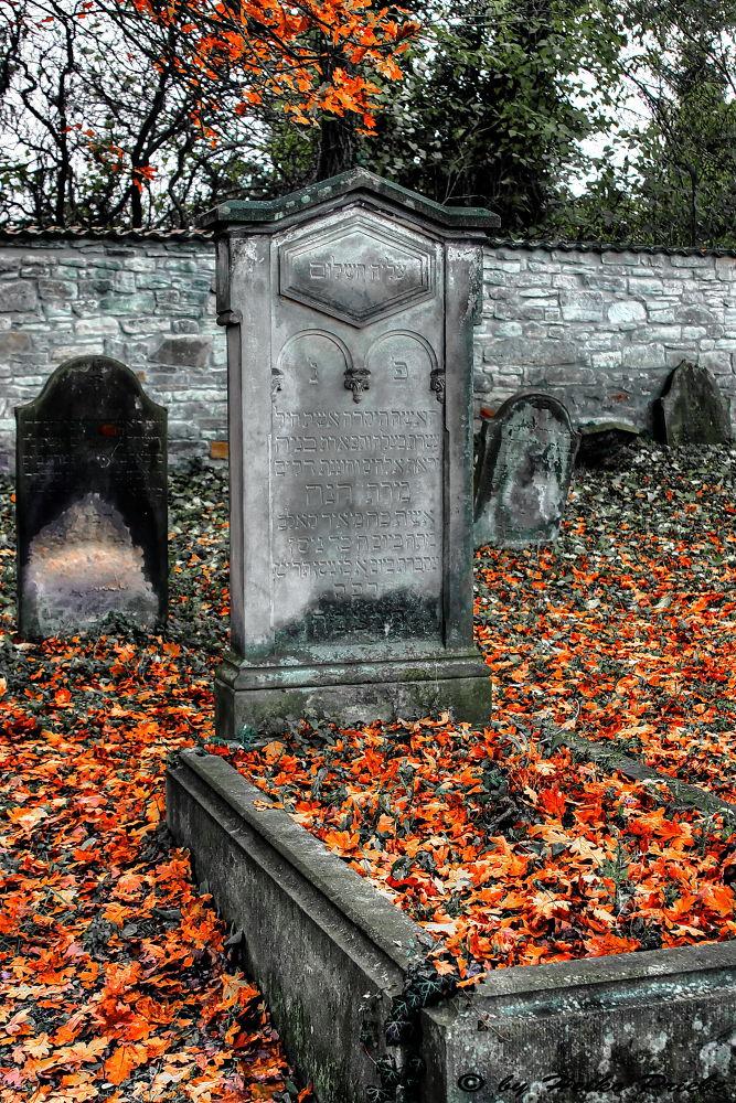 Jewish Cemetery by heikopriebe