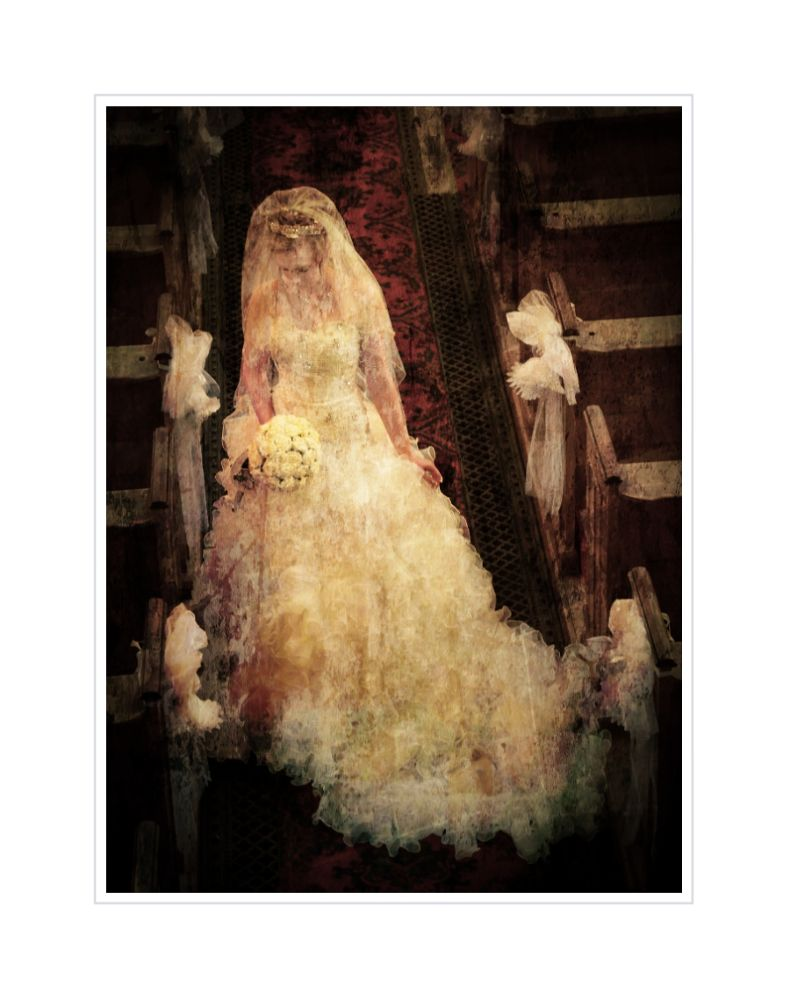 the bride by kathleendevai