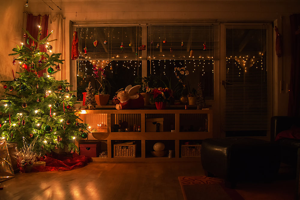 christmas is coming by Leo Walter