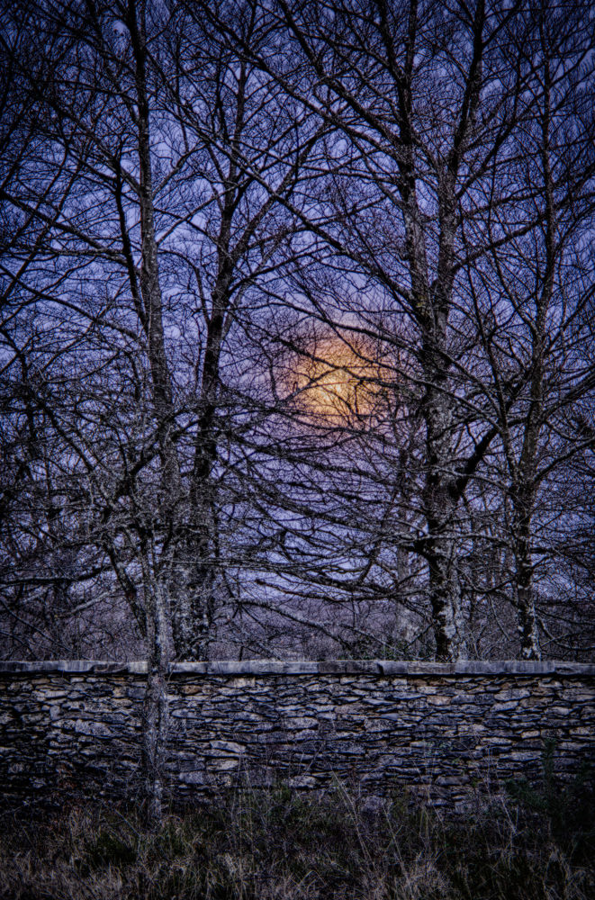 Traped Moon by laurentzimartinez