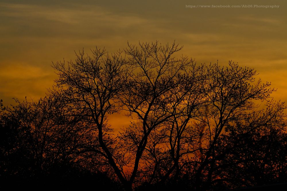 Sunset in the Meadows....! by Abhishek Kumar