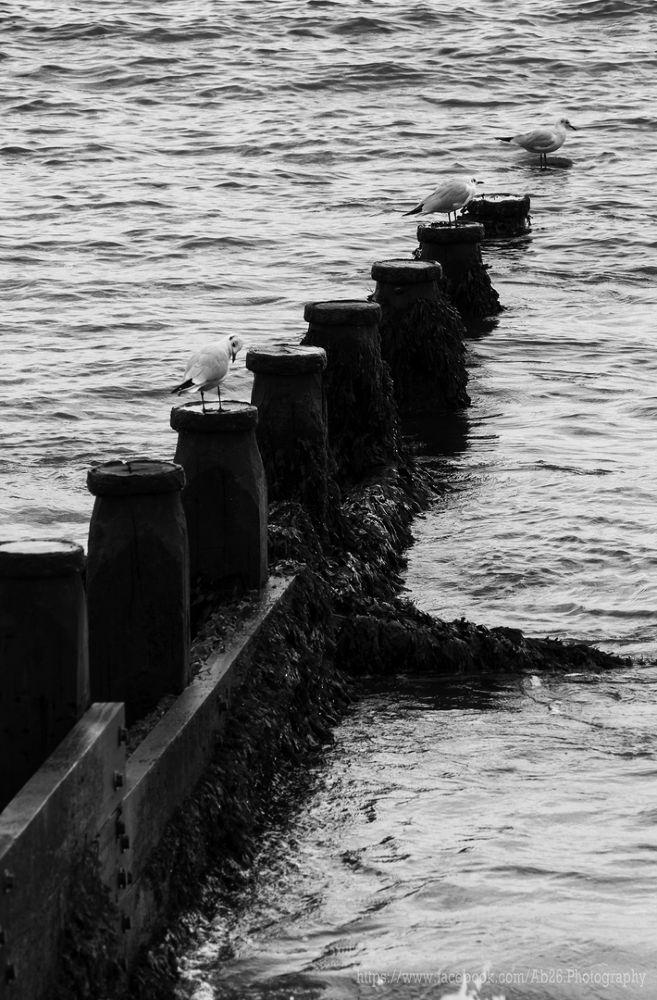 Calm Shore....! by Abhishek Kumar