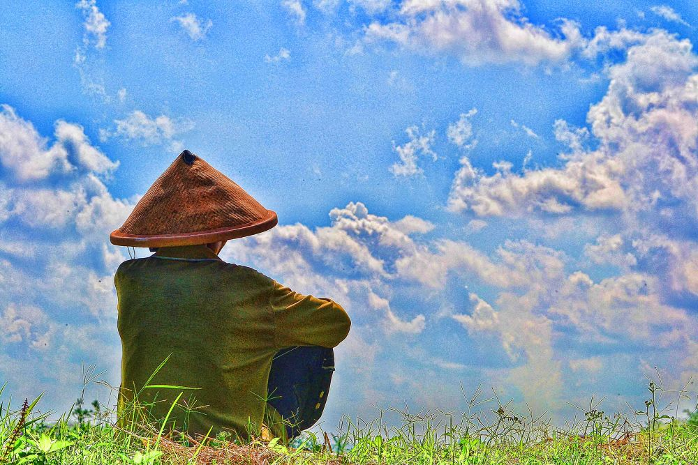 farmer watching the sky by gnyomi
