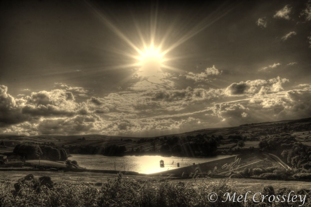 Rays Of Sunshine  by Melanie Crossley