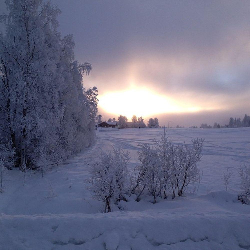 Winter morning by ChristinaJepp