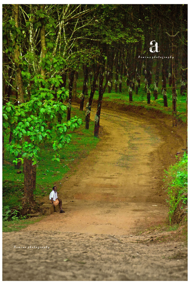 Photo in Random #alone #oldage #far away #green #nature #me