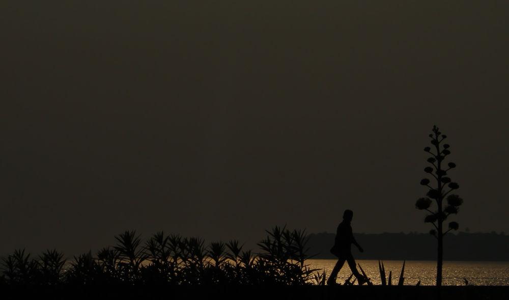 Evening Walk by Marut Pattanaik