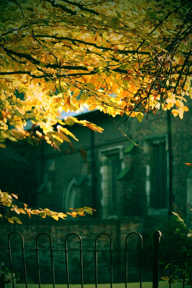 IMG_0876 by Dean_Gregory