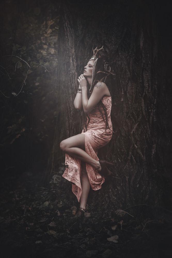 In Woods by Koszki