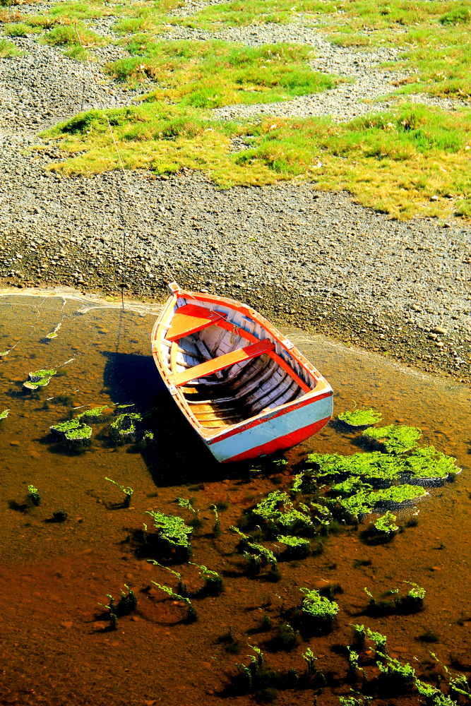 solitary row boat by ichernin