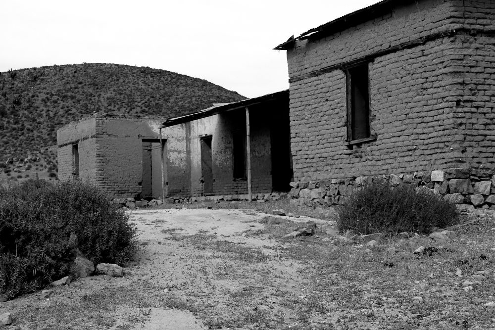 Photo in Black and White #fray jorge national park #coquimbo region #chile #black and white #rural #architecture
