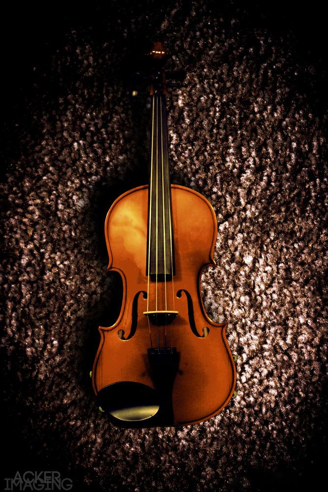Violin by Acker Imaging