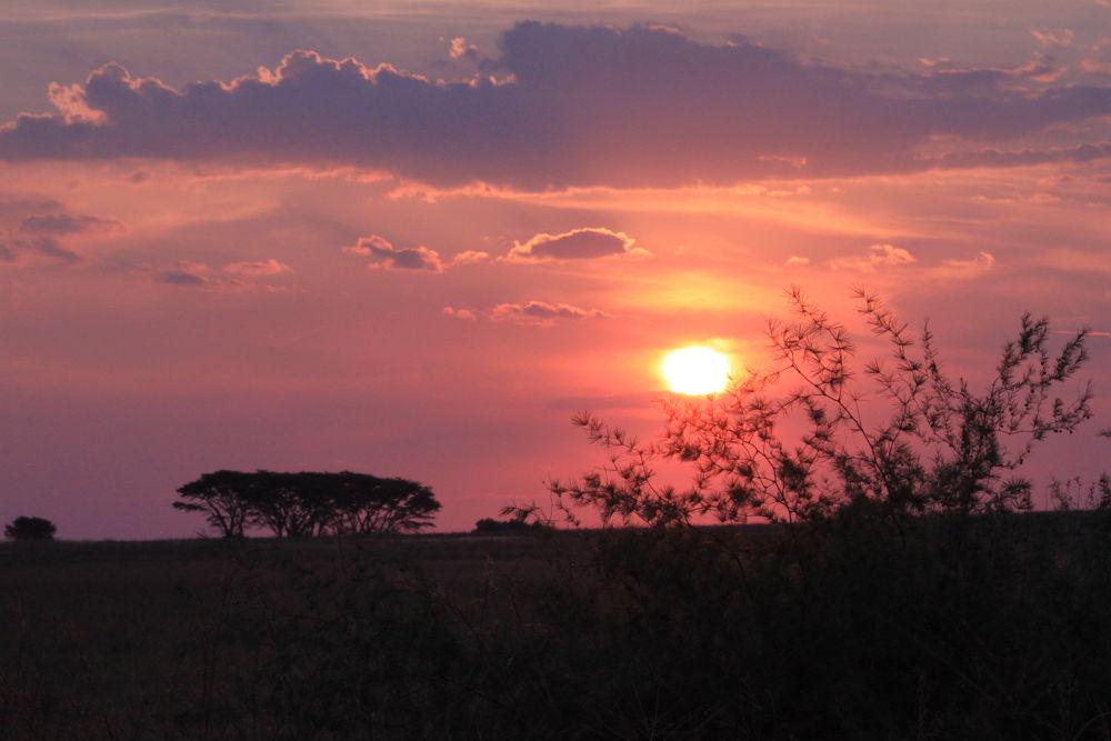 Sunset 2 by lizellelemmer88