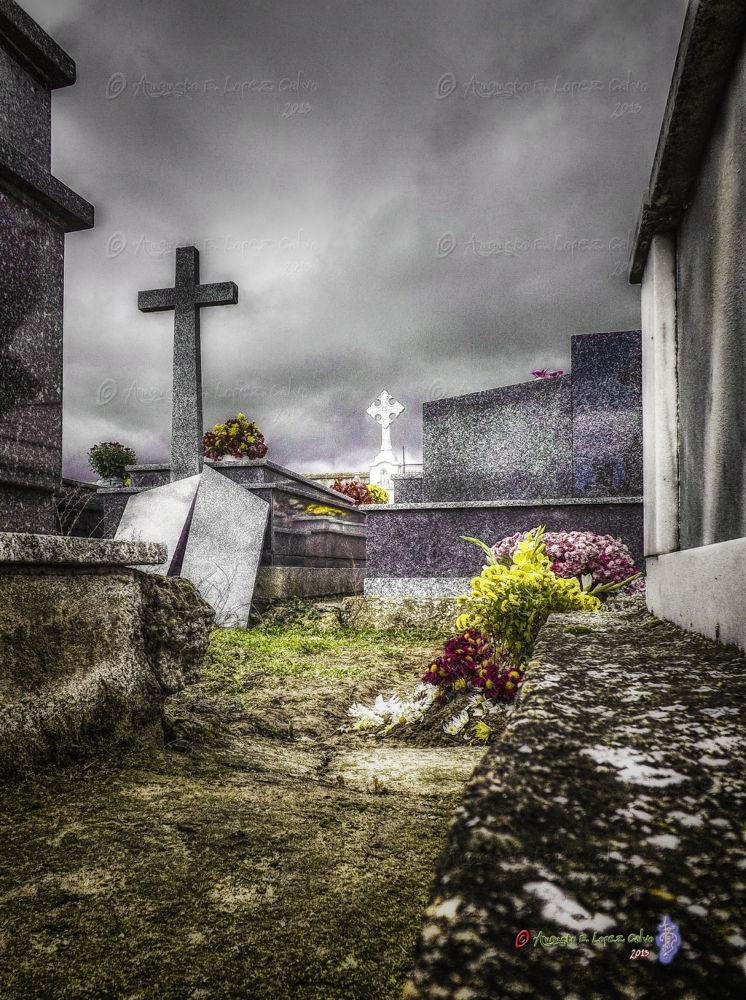 Un rincón en el cementerio. by Augusto E. López Calvo