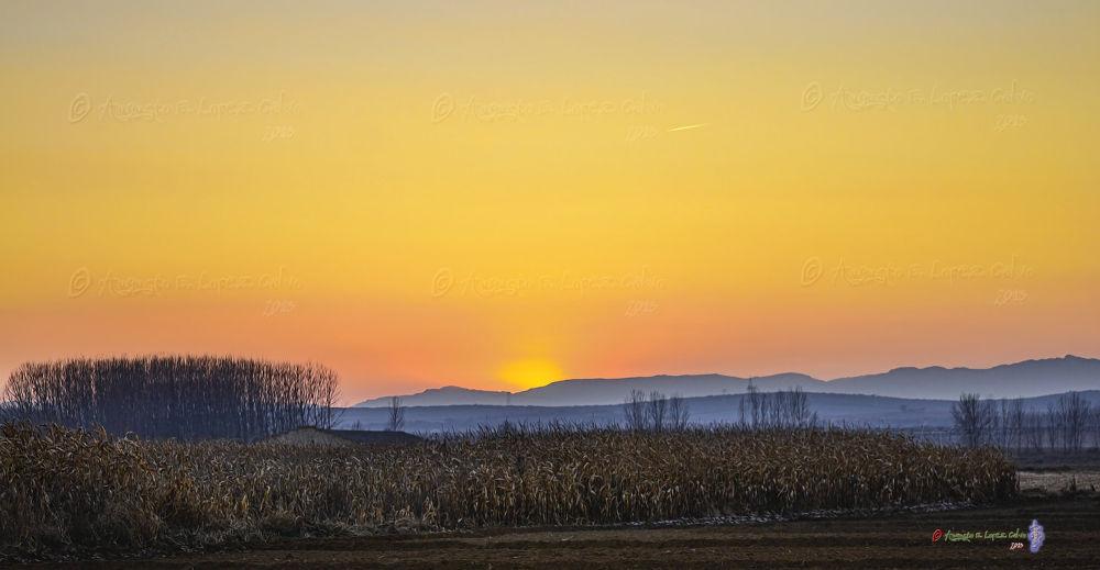 Sunset de Diciembre. by Augusto E. López Calvo