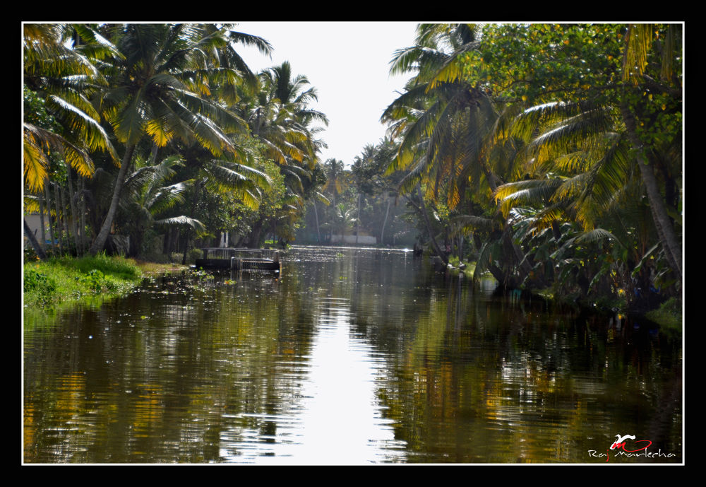 The enigmatic beauty of kerala encloses many wonderful gifts of nature by Raj Marlecha