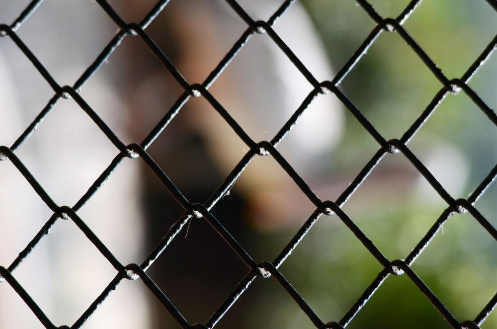 Texture of fence - DOF by Raj Marlecha