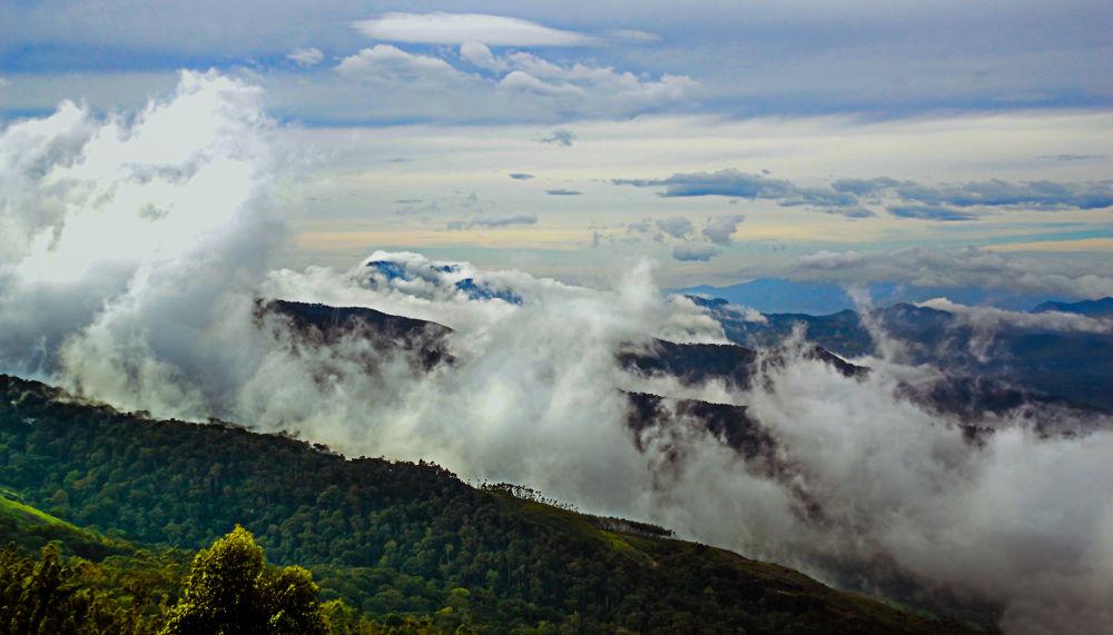 Serenity of the South  by Raj Marlecha