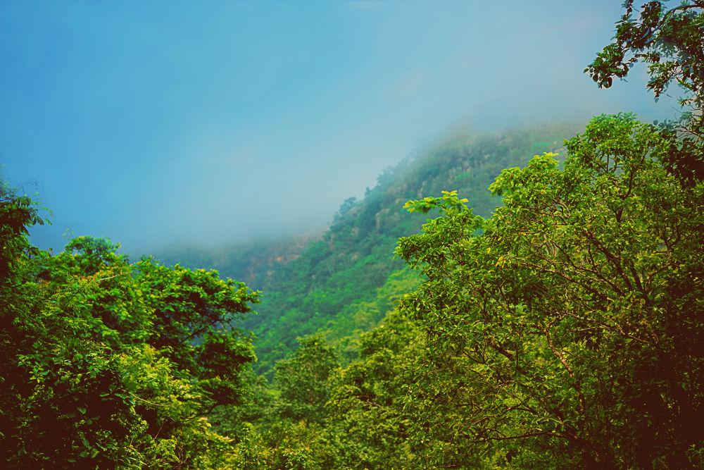 Smokey Mountain Mist by Raj Marlecha