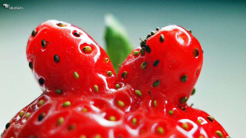 Strawberry  by DuskoKovacic