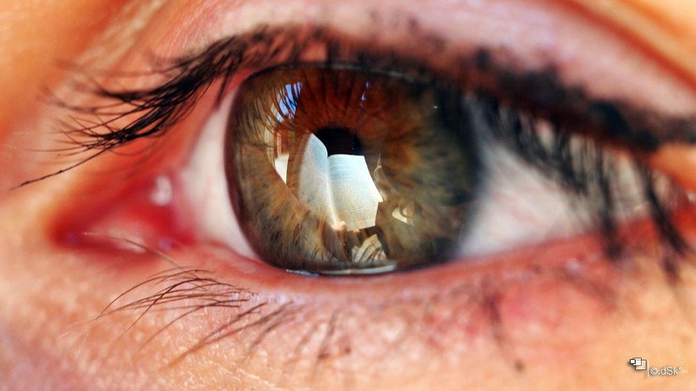 eye reflections #7 by DuskoKovacic