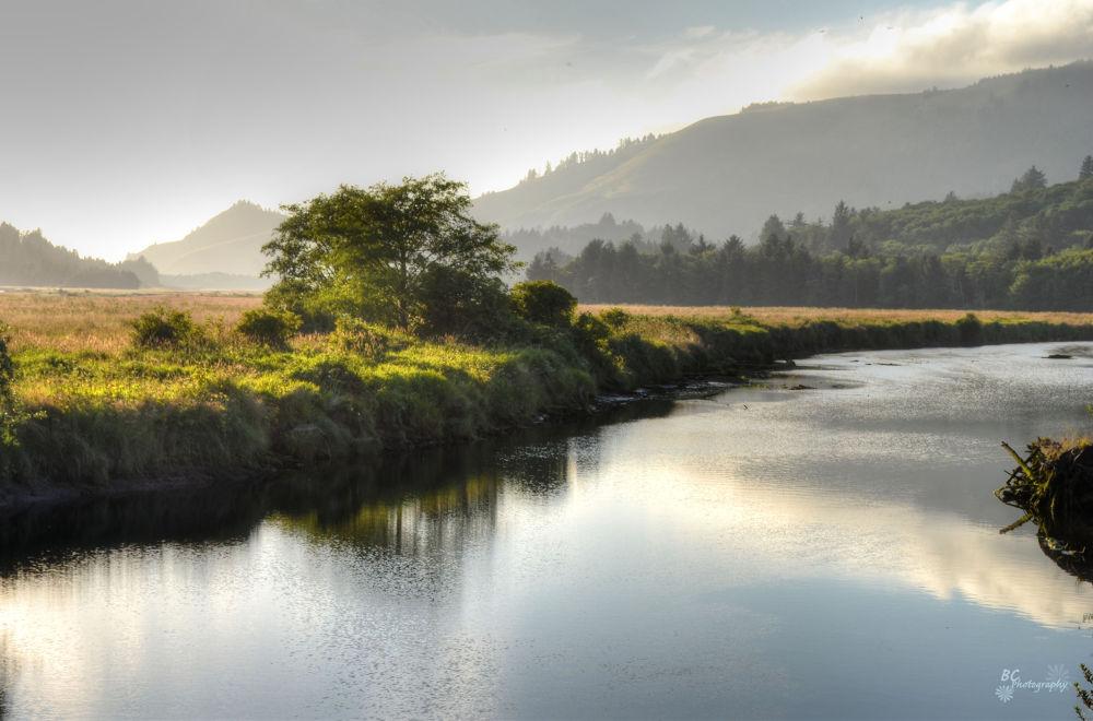 Oregon by alisadoolan
