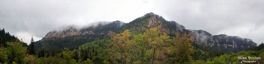 Spearfish Canyon by alisadoolan