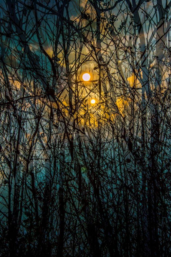Imagine by Naret Singusaha