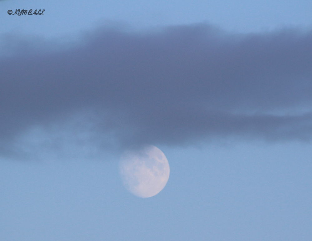 EARLY EVENING MOON by kymball58