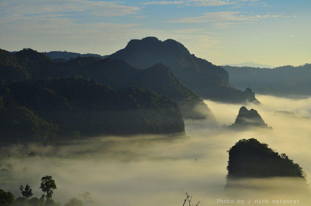 A spectacular mist of Thailand is known as the mist flow.....Phulangka Phrayao Thailand by nicknaiyarat