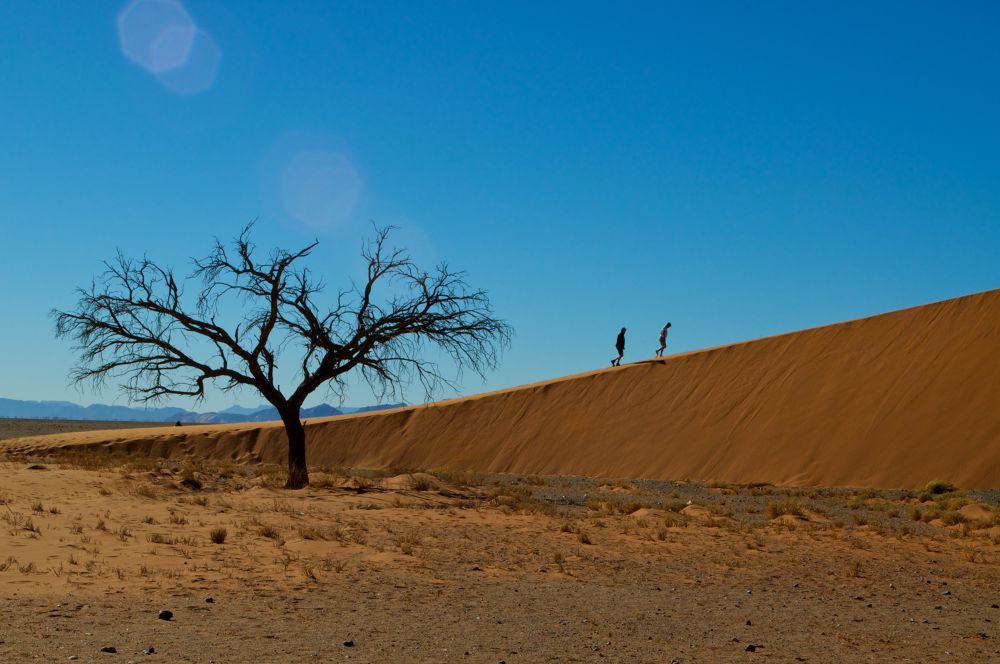 Dune 45, Sossusvlei, Namibia. by Grégory Hallé Petiot