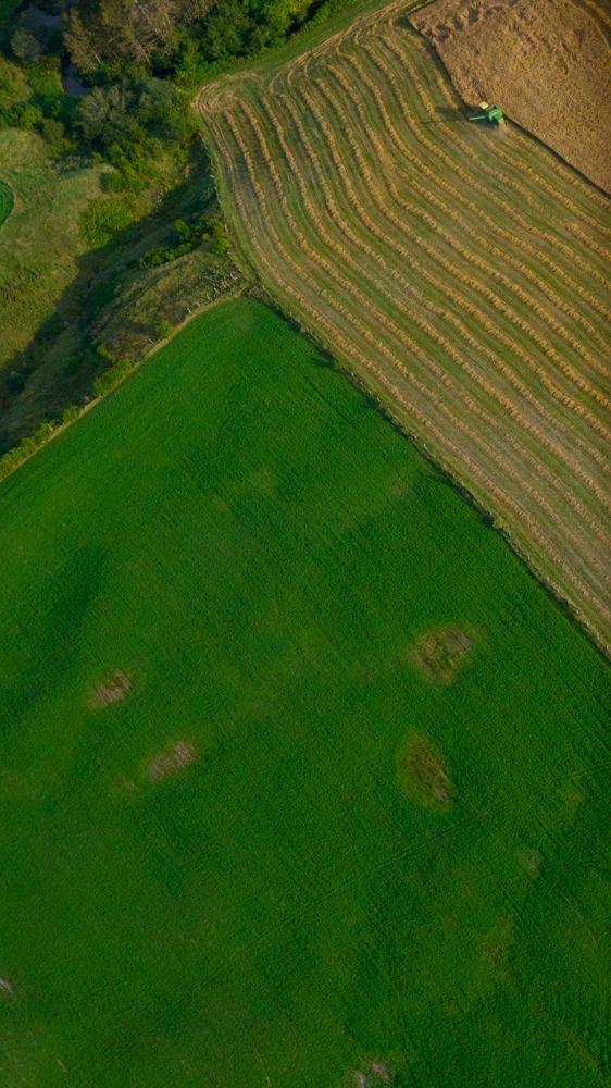 Land by Grégory Hallé Petiot