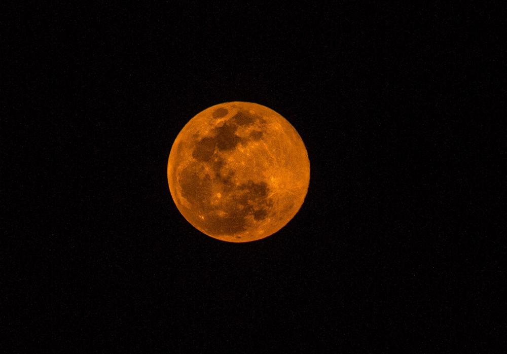 Super Moon 2013 by dwaterbear