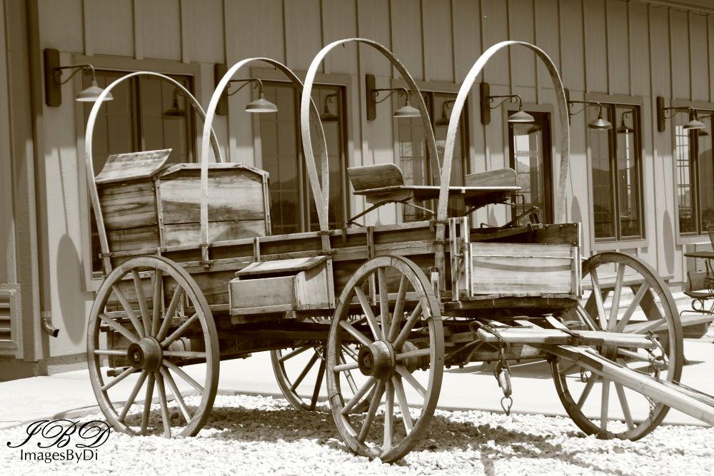 Covered Wagon, Virginia City, NV by dianafernamburg