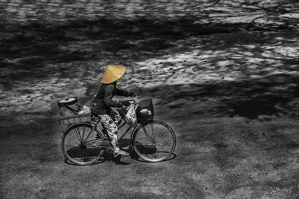 Patelle by photomagaflor