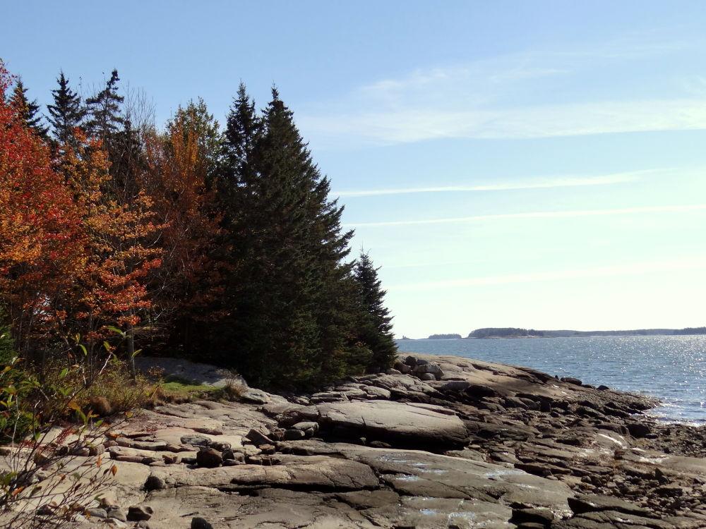 Fall on the Maine Coast by photosbydot