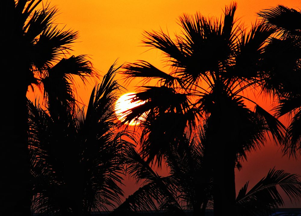 SUN SET IN HOT DESERT  by Rakitha Gayan C. Perera