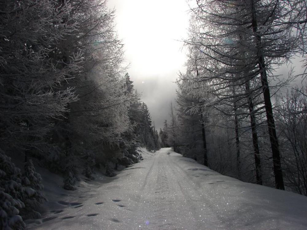 Winter by BeckyGray1971