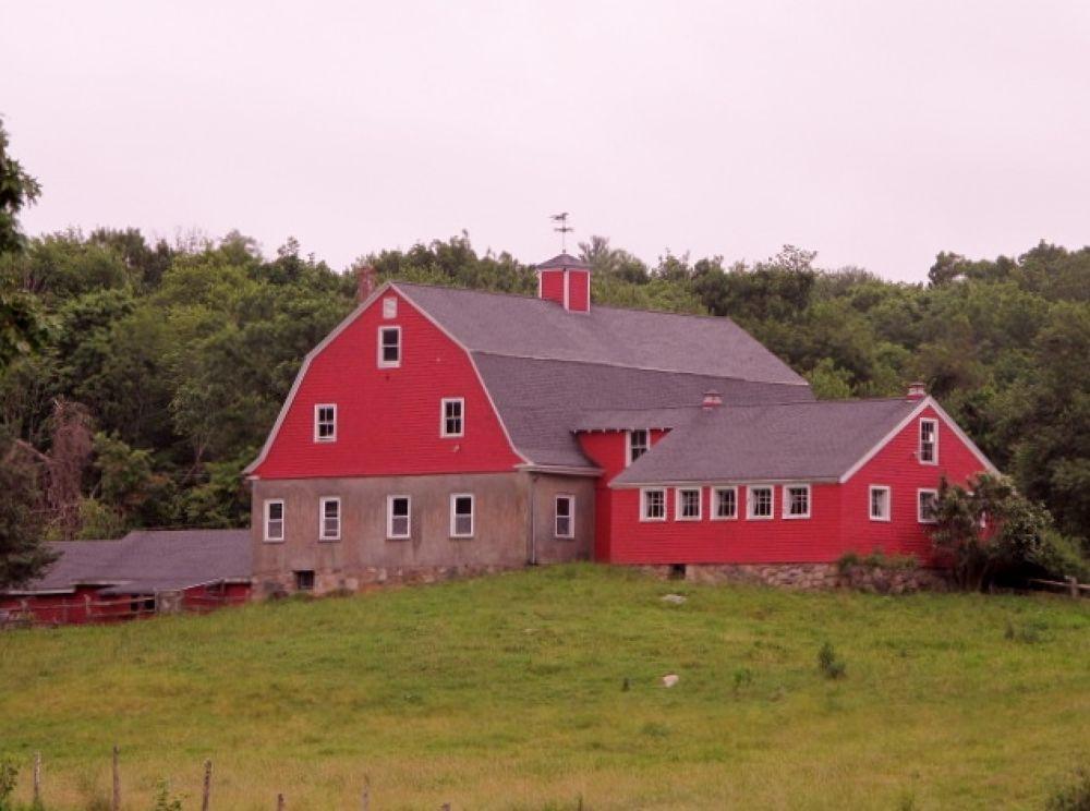 IMG_2031  the farm . by paulcrimi178
