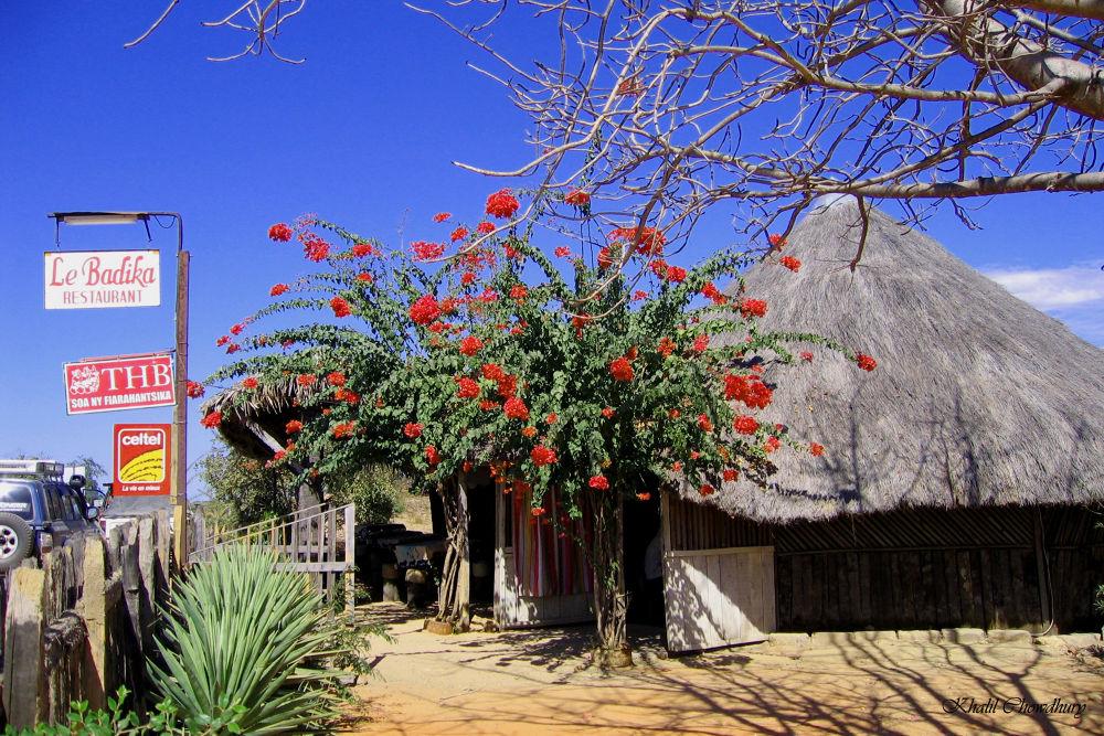 Malaimbandi, Madagascar by Khalil Chowdhury