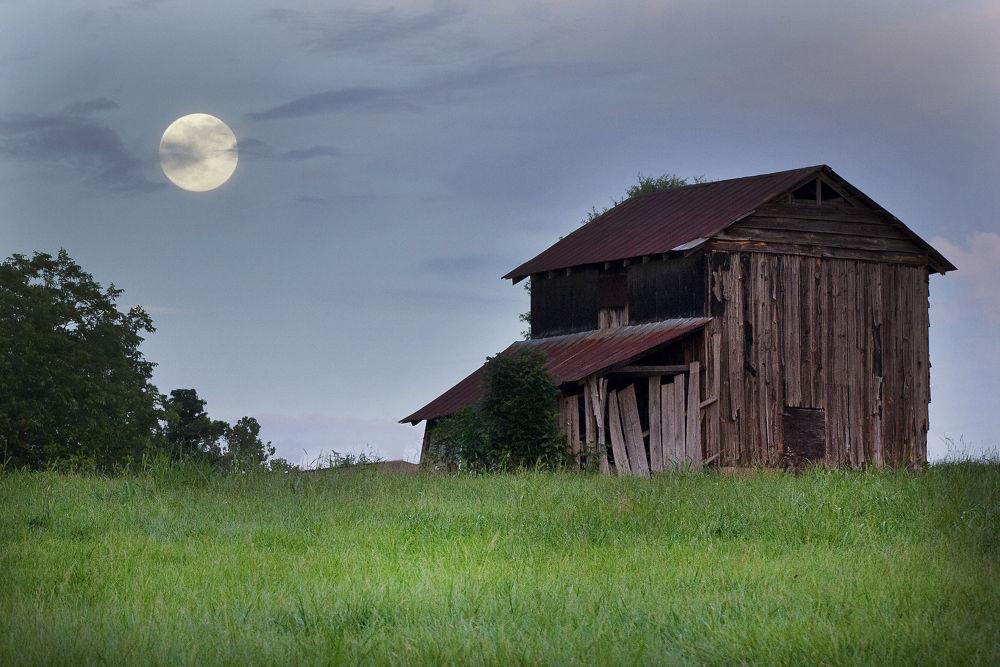 Big Moon  by Dan