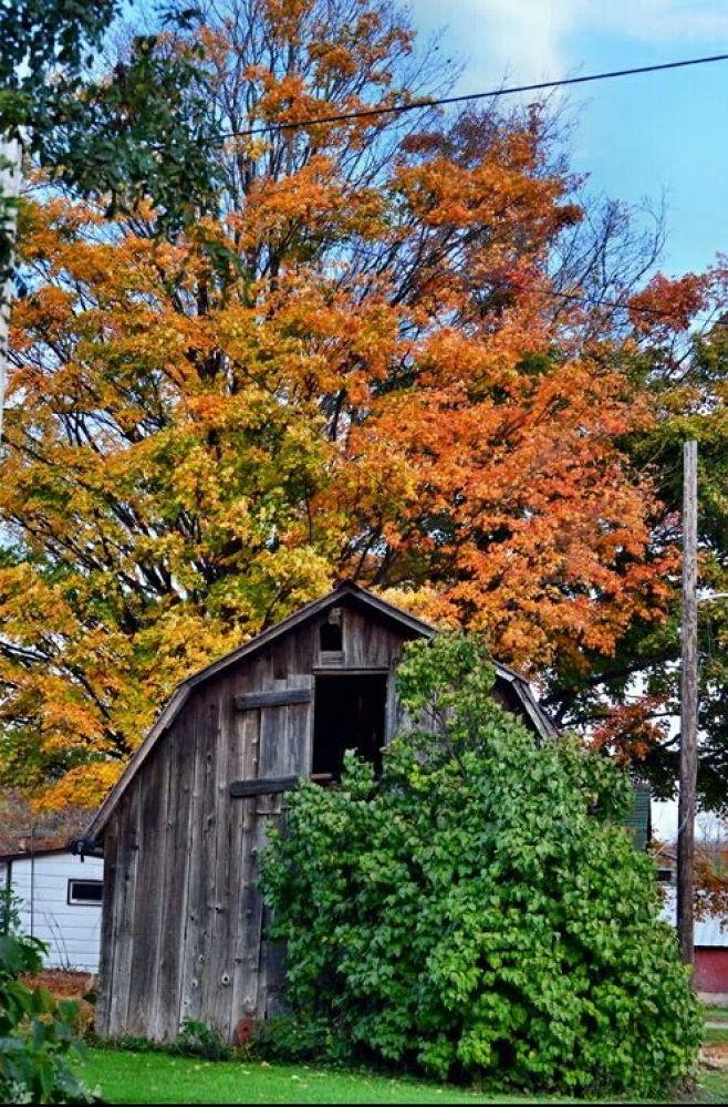 little barn by guitarplayer2571