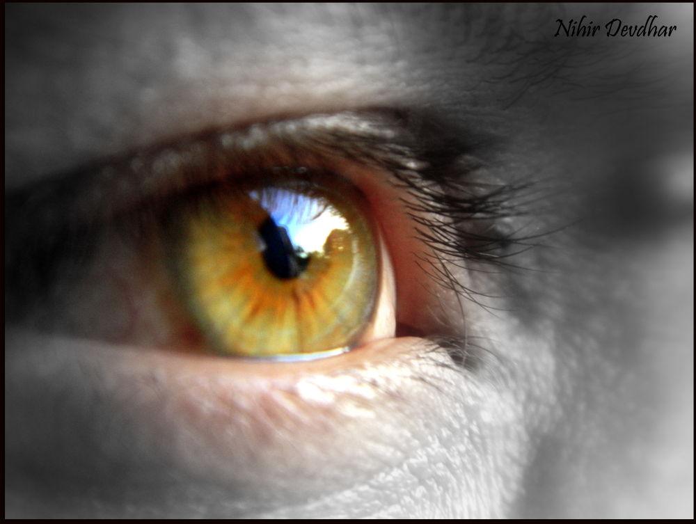 eyes.... by Nihir J Devdhar