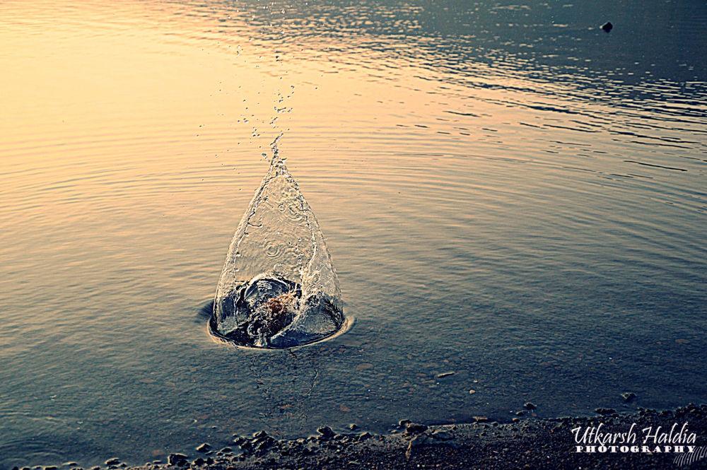 Perfect timings  by Utkarsh Haldia