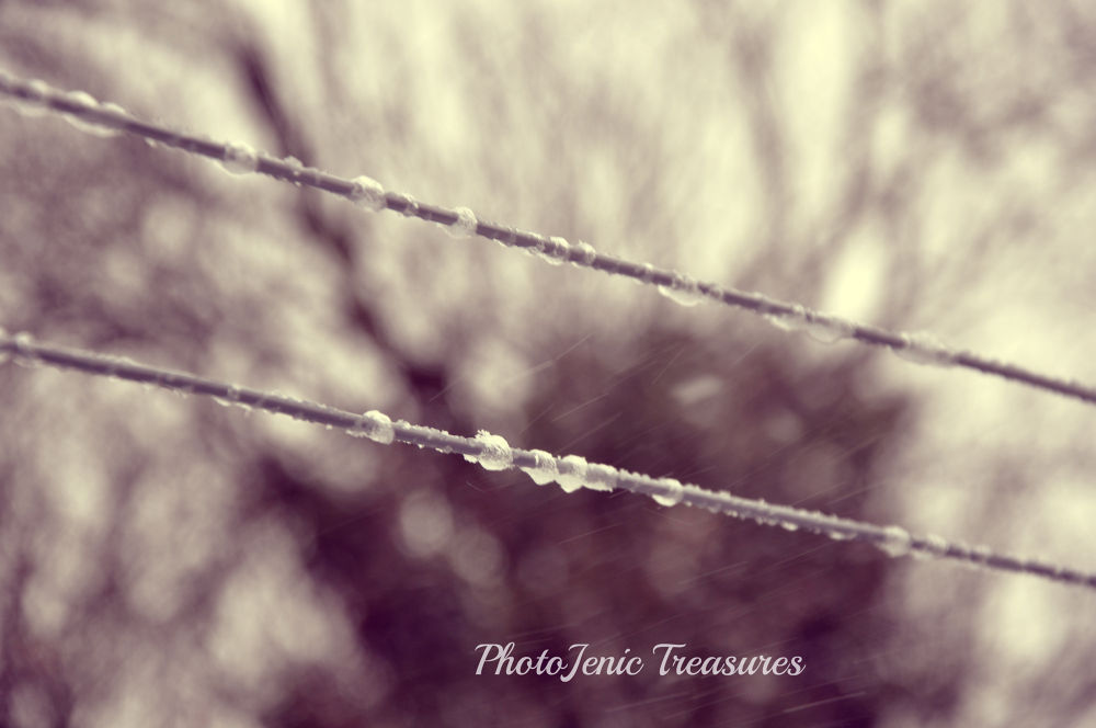 Photo in Random #ice #weather #winter #photojenic treasures